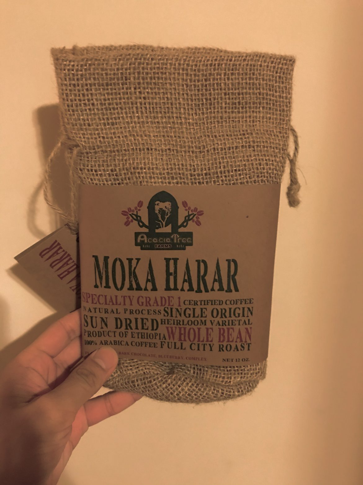 Nik's Interview: Acacia Tree Coffee